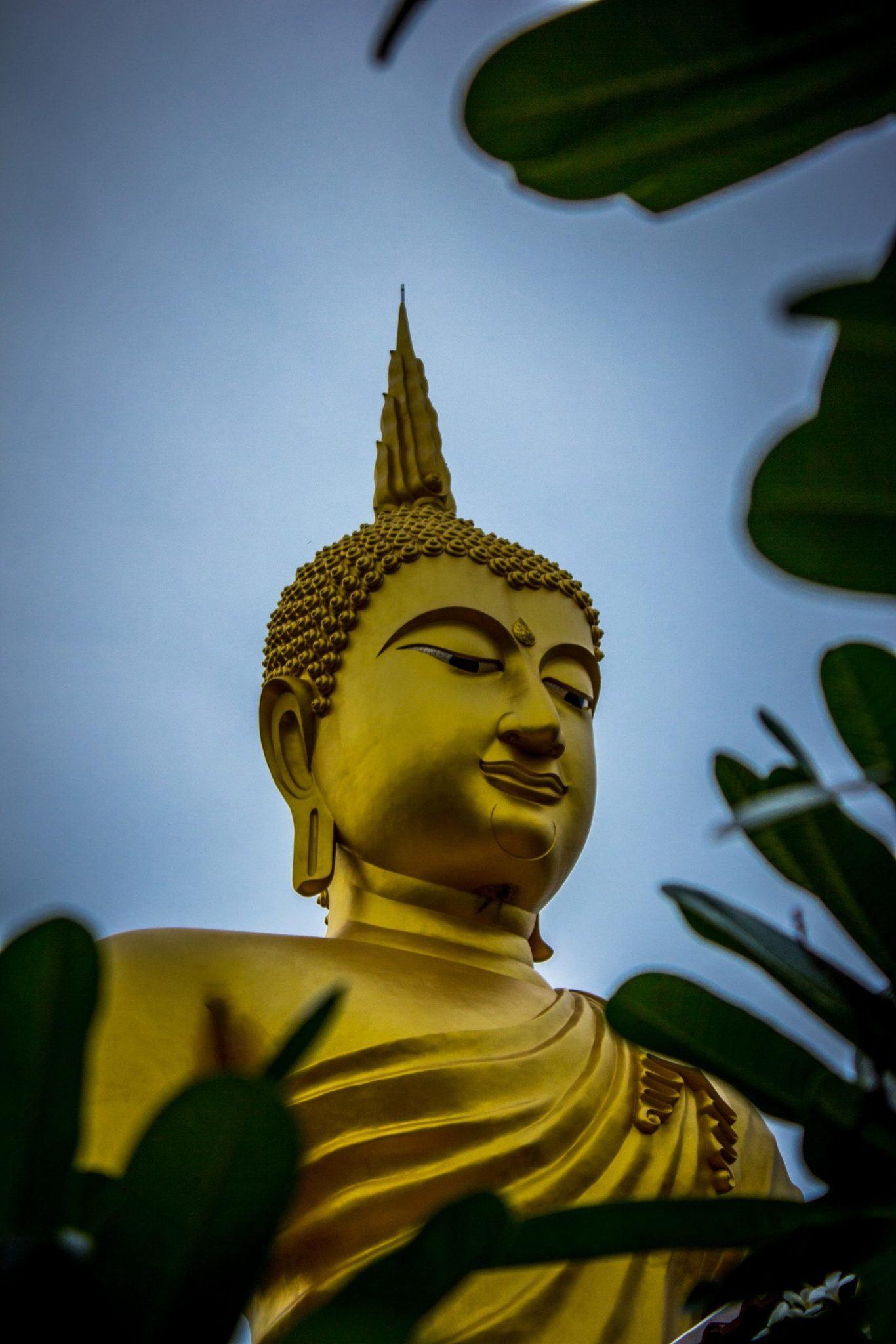 gautama-buddha-statue-937464